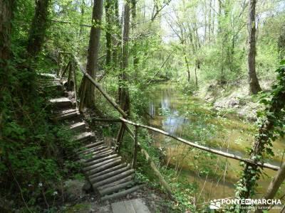 Senda de los Pescadores-Cuellar;la cabrera madrid ruta del agua el monasterio de piedra